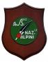 Crest Associazione Nazionale Alpini
