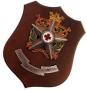 Crest Corpo Militare Croce Rossa Italiana