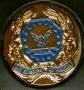 Placca Associazione Europea Operatori Polizia -A.E.O.P.-
