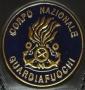 Placca Corpo Nazionale Guardafuochi