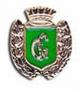 Placca Guardie Giurate verde