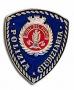 Placca Vigili del Fuoco -Polizia Giudiziaria-