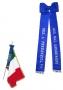 Fiocco Bandiera ANC