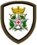 Omerale (scudetto) CRI Corpo Militare